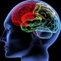 Memory Loss Causes
