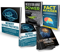 Memory Repair Protocol